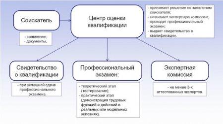 Руководители экспертных организаций будут подтверждать квалификацию